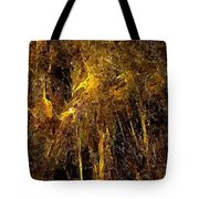 Abstraction 0351 Marucii Tote Bag