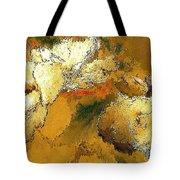 Abstraction 0434 Marucii Tote Bag