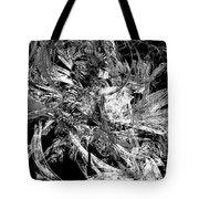 Abstraction  0495 - Marucii Tote Bag