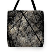 Abstraction 0619 Marucii Tote Bag