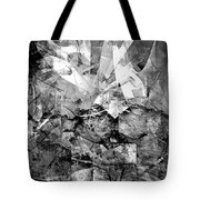 Abstraction B-w 0511 - Marucii Tote Bag
