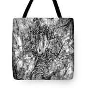 Abstraction B-w 0554 - Marucii Tote Bag