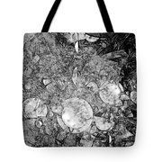 Abstraction B-w 0572 - Marucii Tote Bag
