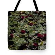 Abundance In Crimson  Tote Bag