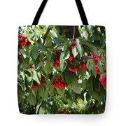 Abundant Cherries Tote Bag