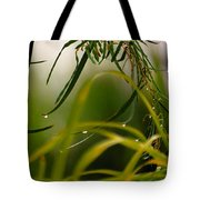 Acacia Water Drops Tote Bag