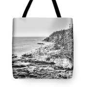 Acadia National Park In Bw Tote Bag