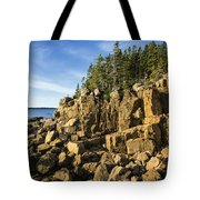 Acadia Seascape Tote Bag