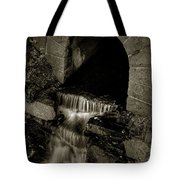 Acadia Waterfall Tote Bag