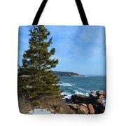 Acadian Shores In Winter Tote Bag