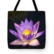 Accents On A Purple Waterlily... Tote Bag