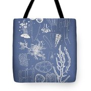 Acetabularia Caraibica And Chondria Intricata Tote Bag by Aged Pixel