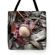 Acorn A Copia Tote Bag