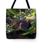 Acorn Grip Tote Bag