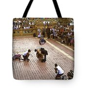 Acrobatics In The Park Tote Bag