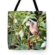 Acrobird Tote Bag