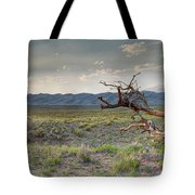 Across A Great Wilderness Tote Bag