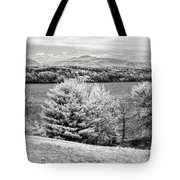 Across The Hudson Tote Bag