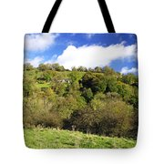 Across The Southern End Of Monk's Dale Tote Bag