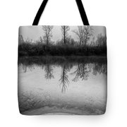 Across The Water Tote Bag by Davorin Mance