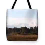 Across The Wetland Tote Bag