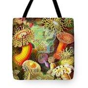Actinia Sea Creatures Tote Bag