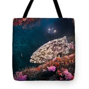 Action On The Castor Tote Bag by Sandra Edwards