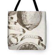 Adam's Apple Tote Bag by Cornelis Bloemaert