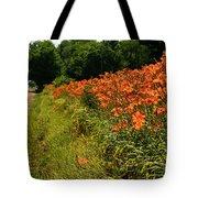 Adamsville Lilies 1 Tote Bag