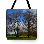 Adare Manor Grounds Tote Bag