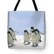Adelie Penguin Group Running Antarctica Tote Bag