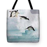 Adelie Penguins Diving Off Iceberg Tote Bag
