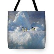 Adelie Penguins On Iceberg Antarctica Tote Bag
