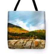 Adirondack Autumn Tote Bag