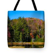 Adirondack Color IIi Tote Bag