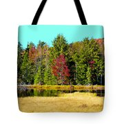 Adirondack Color Iv Tote Bag