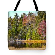 Adirondack Color Near Old Forge New York Tote Bag