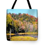 Adirondack Color V Tote Bag