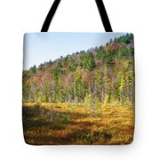 Adirondack Color Vi Tote Bag