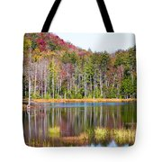 Adirondack Color Viii Tote Bag