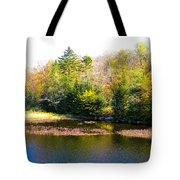 Adirondack Color X Tote Bag