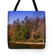 Adirondack Color Xi Tote Bag