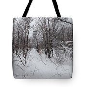 Adirondack Fire Tower 1 Of 6 Tote Bag