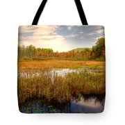 Adirondack Pond Tote Bag
