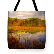 Adirondack Pond II Tote Bag
