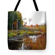 Adirondack Pond Iv Tote Bag