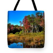 Adirondack Stream In Autumn Tote Bag
