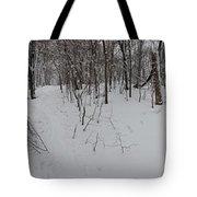 Adirondack Woods 3 Tote Bag