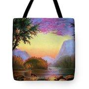 Adirondacks Sunset Tote Bag