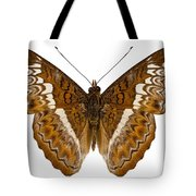 Admiral Limenites Butterfly Tote Bag